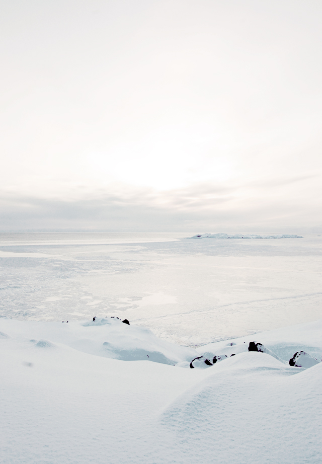 Grønland_landskab_640_7